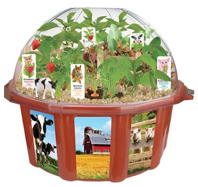 Farmer's Garden, Edible Dome Terrarium  -