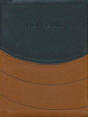 NIV Ministry Essentials Bible, Flexisoft, Black/Brown   -
