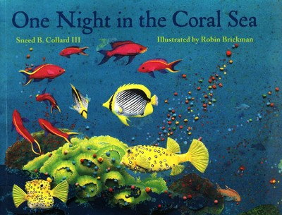 One Night in the Coral Sea   -     By: Sneed B. Collard III