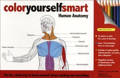 Color Yourself Smart: Human Anatomy   -     By: Wendy L. Leonard