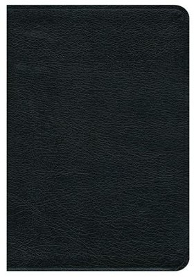 NRSV Premium Bible--bonded leather, black   -