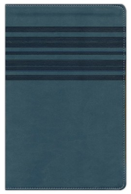 NIrV Large-Print Bible--soft leather-look, slate blue with stripes  -
