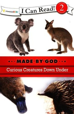 Curious Creatures Down Under  -