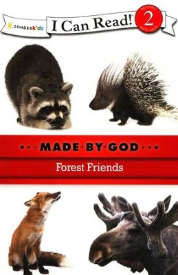 Forest Friends  -