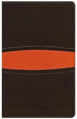 NIV Boys Bible, Italian Duo-Tone, Brown/Orange - Slightly Imperfect  -