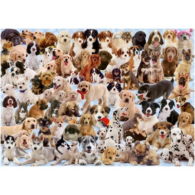 Dogs Galore!, 1000 Piece Puzzle   -