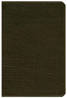 NLT Pitt Minion Reference Bible, Goatskin leather, brown  -