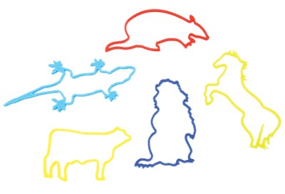 SonWest Roundup: Western Critter Silly Bands - Pkg of 25  -