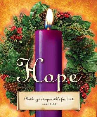 Advent Sunday 1 Purple Bulletins, Large Size (Package of 50)  -