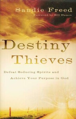 Destiny Thieves  -     By: Sandie Freed