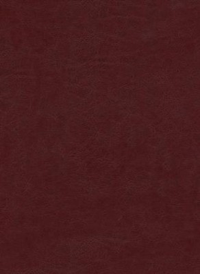 The Message Bible: Large Print Edition, Burgundy Leather-look  -     By: Eugene H. Peterson