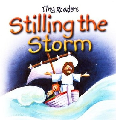 Stilling the Storm  -     By: Juliet David