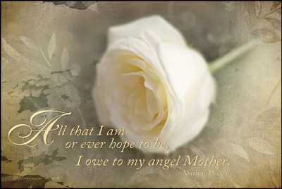 All that I Am or Hope to Be I Owe to My Angel Mother Mounted Print  -     By: Shannon Marie