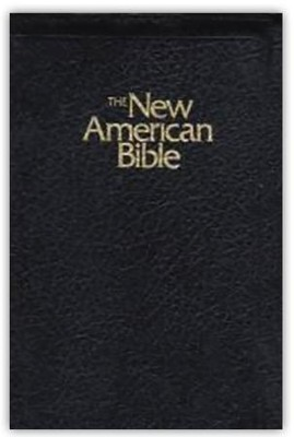 NAB Gift Bible, Imitation Leather, Black with zipper   -