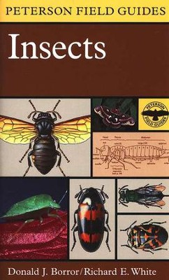 Peterson Field Guide to Insects   -     Edited By: Roger Tory Peterson     By: Richard E. White, Donald J. Borror     Illustrated By: Richard E. White