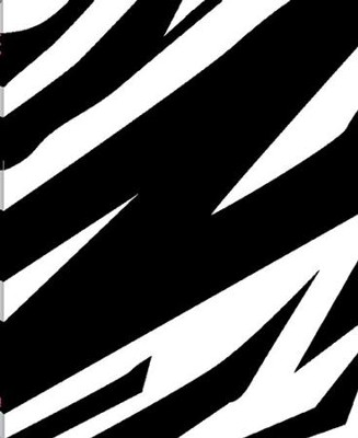 The Message // REMIX 2.0--soft leather-look, zebra print  -     By: Eugene H. Peterson