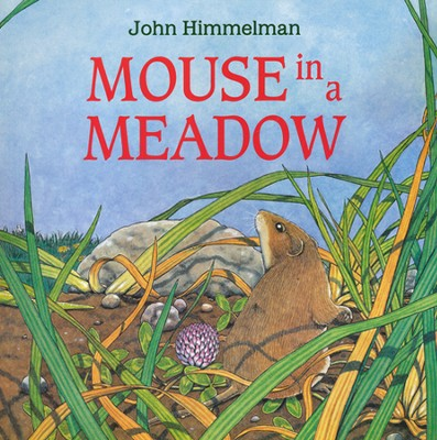 Mouse in a Meadow   -     By: John Himmelman