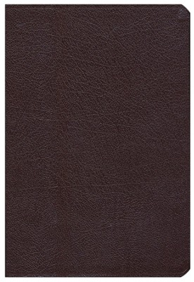 NIV Archaeological Study Bible, Bonded Leather Burgundy 1984, Case of 6  -