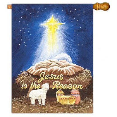 Jesus is the Reason Art Flag, Large  -     By: MaryLou Troutman