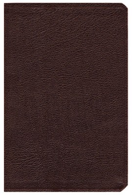 NIV (1984) Life Application Study Bible, Revised--bonded leather, burgundy  -