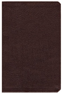 NIV Life Application Study Bible, Revised, Bonded leather, burgundy - Slightly Imperfect  -