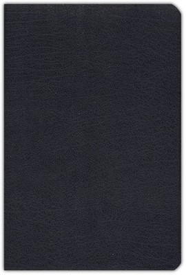NIV (1984) Life Application Study Bible, Revised--bonded leather, navy blue  -