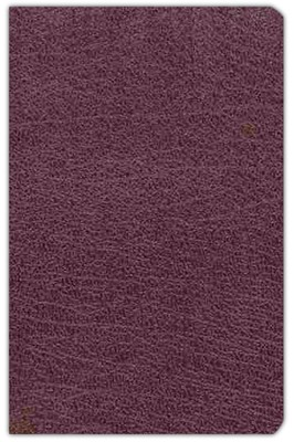 NIV Compact Thinline Reference Bible, bonded burgundy 1984  -