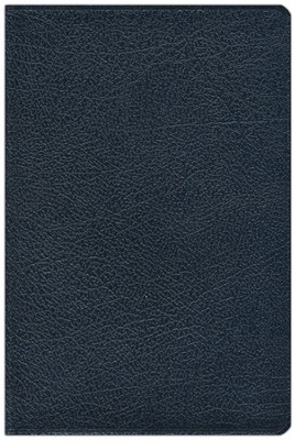 NIV Compact Thinline Bible, bonded navy 1984  -