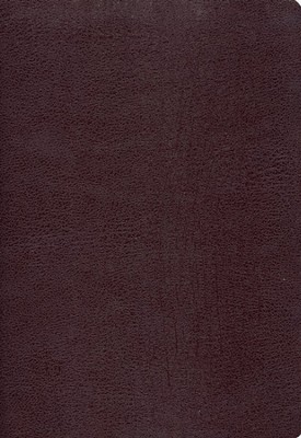Zondervan NIV (1984) Study Bible--bonded leather, burgundy  -