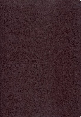 Zondervan NIV (1984) Study Bible--bonded leather, burgundy, Case of 12  -