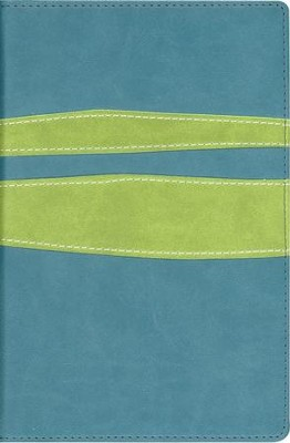 NIV Teen Study Bible Compact, Italian Duo-Tone, Jasper/Leaf Green - Slightly Imperfect  -
