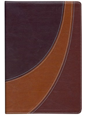 The NIV Case for Christ Study Bible--soft leather-look, black/cherry/dark caramel 1984  -     By: Lee Strobel