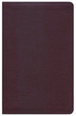 NIV Life Application Study Bible, Personal Size, Bonded Leather, Burgundy 1984, Case of 12  -