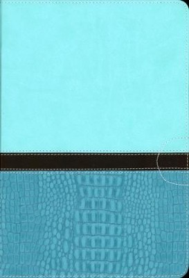 NIV Quest Study Bible: The Question and Answer Bible, Imitation Leather, Turquoise Caribbean Blue - Slightly Imperfect  -