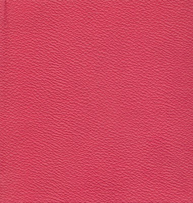 NIV Chunky Bible Italian Duo-Tone &#153, Hot Pink 1984  -