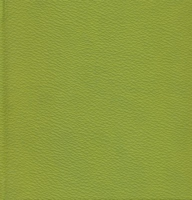 NIV (1984) Chunky Bible--soft leather-look, green  -
