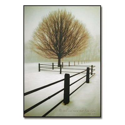 Be Still and Know Mounted Print   -     By: David Lorenz Winston
