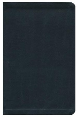 NRSV Go-Anywhere Personal Size Thinline Bible, Bonded Leather, Black  -