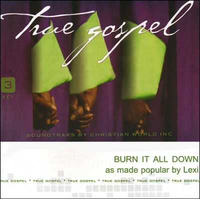 Burn It All Down Acc, CD  -     By: Lexi