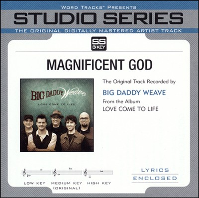 Magnificent God Acc, CD  -     By: Big Daddy Weave