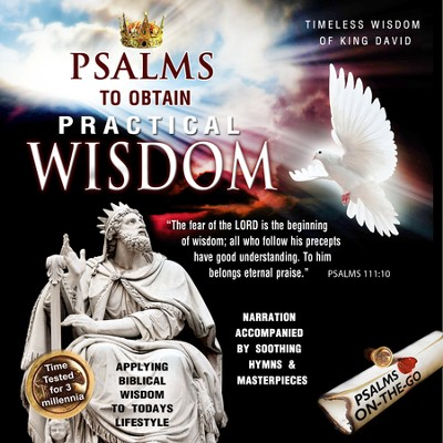 Psalms to Obtain Practical Wisdom CD  -     By: David & The High Spirit