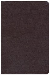 NAS New Inductive Study Bible, Bonded leather, Burgundy