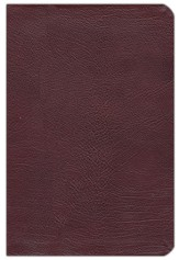 NAS New Inductive Study Bible, Genuine leather, Burgundy