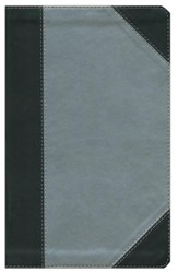 KJV Ultraslim Bible, Imitation Leather, Silver Shimmer