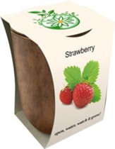 Bamboo Fiber Jar, Indoor/Outdoor Grow Kit, Strawberry