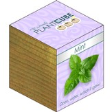 Ecofriendly Plant Cube, Indoor Grow Kit, Mint