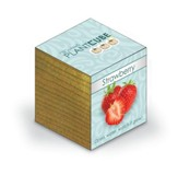 Ecofriendly Plant Cube, Indoor Grow Kit, Strawberry