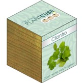 Ecofriendly Plant Cube, Indoor Grow Kit, Cilantro