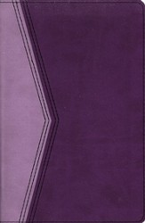 KJV Reference Bible--soft leather-look, plum/lavender