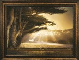 Arise, Shine, for Your Light Has Come--Framed Print